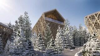 Tree Suites, le case sugli alberi di Peter Pichler immerse nelle foreste austriache
