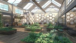 Recompose, il primo impianto funebre di compostaggio umano al mondo aprirà nel 2021