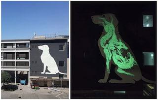Reskate Studio e la street art luminescente che brilla di notte con messaggi nascosti