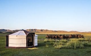 GerTent, la tenda che si ispira a una delle più antiche case nomadi dell'Asia