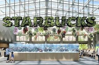Starbucks apre a Tokyo il primo negozio che sembra una serra