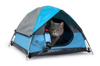 Cat Camp, la tenda da campeggio per gatti avventurosi