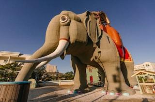 Lucy the Elephant, il più antico esempio di architettura zoomorfa sulla Terra