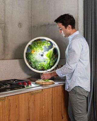 Rotofarm, il giardino automatizzato da far crescere in cucina