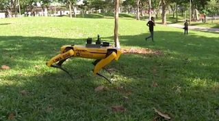 Singapore usa i cane robot al parco per far rispettare la distanza di sicurezza