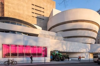 Perché Rem Koolhaas ha creato una serra al MuseoGuggenheim diNew York