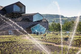 Piet Oudolf progetta il nuovo giardino per il Campus Vitra di Weil am Rhein