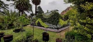 Roma, inaugura la Living Chapel fatta di materiali di riciclo e rivestita da 3.000 piante