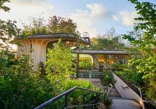 Studio Heatherwick progetta il nuovo Maggie's Center come un giardino pensile