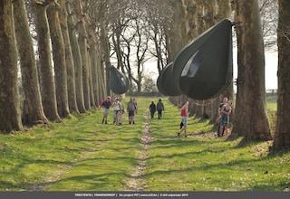 Dré Wapenaar ha ideato le tende a forma di lacrima per soggiorni sospesi sugli alberi