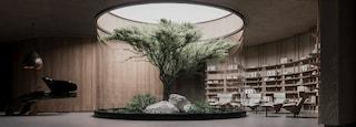 Il bunker sotterraneo in cui cresce un albero