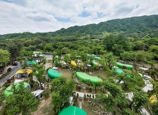 Glamtree resort, il villaggio per fare glamping nella foresta coreana