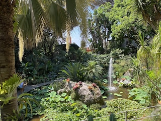 I Giardini La Mortella, il più bel giardino d'amore in Italia