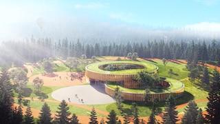 Tree-House School, la scuola sull'albero per un mondo post-covid