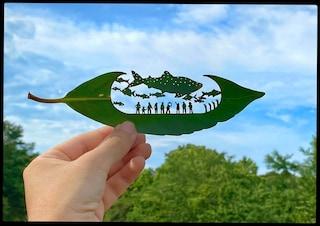 L'artista giapponese che scolpisce le foglie degli alberi