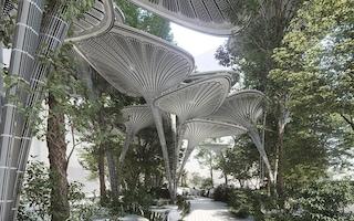 Oasys, l'oasi di palme artificiali nel centro di Abu Dhabi