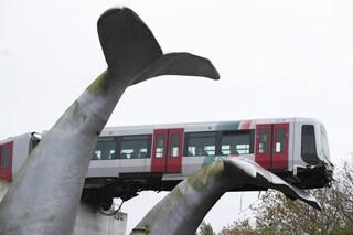 Rotterdam, come la scultura a coda di balena ha salvato un treno deragliato