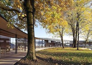 Kengo Kuma progetta una biblioteca immersa nel verde