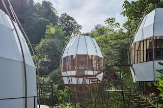 Il resort di nidi di lusso nella giungla è il luogo ideale per una fuga post-pandemia