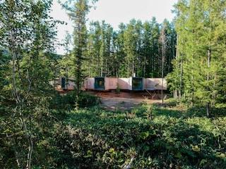 La casa nella foresta è un sogno che diventa realtà