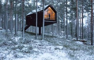 La suite tra gli alberi con vista privilegiata sullo spettacolo della natura