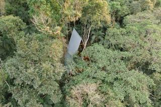 Il rifugio nella foresta ispirato alla casa delle scimmie