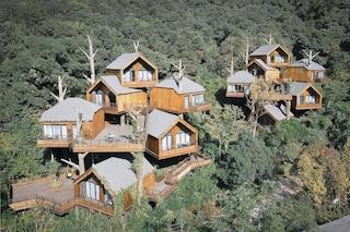 Il resort di lusso fatto di capanne sull'albero immerse nella foresta