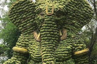 Questa enorme scultura di banane di Ganesh è la più grande mai realizzata