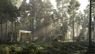Queste case scompaiono nel bosco per vivere completamente immersi nella natura