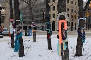 Realizzano sciarpe a mano e le lasciano sugli alberi: così aiutano i senzatetto