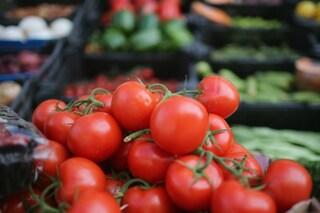 Gli alimenti diuretici: ecco i cibi che eliminano le scorie
