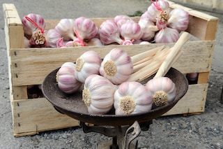 Antizanzare, disinfettante e colla naturale: ecco i 5 usi alternativi dell'aglio