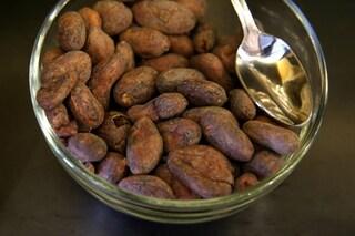 Tutte le proprietà del cacao per la pelle