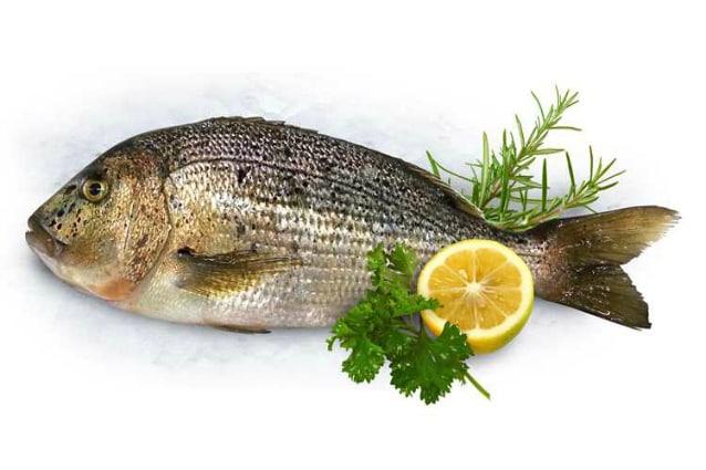 Cucina salutare e originale 5 ricette con il pesce che for Nuove ricette cucina