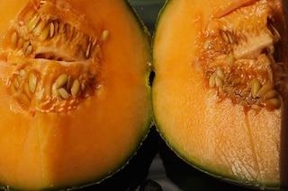 Oroscopo: un frutto estivo per ogni segno zodiacale (FOTO)