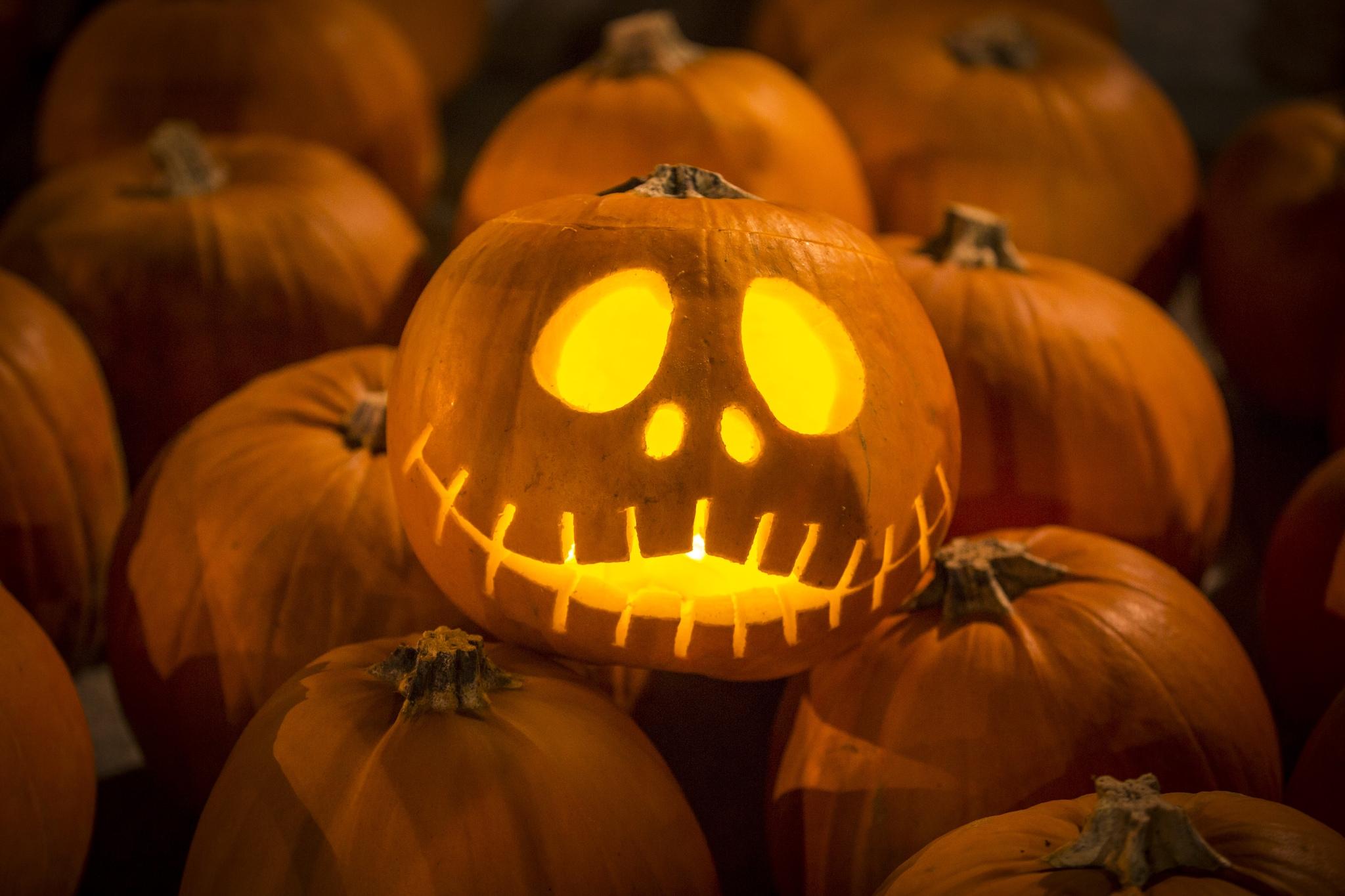 Intagliare Zucca Per Halloween Disegni 10 idee originali per intagliare le zucche di halloween (foto)