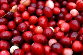 Aglio, pomodori, frutti di bosco: i 10 cibi dalle proprietà antitumorali (FOTO)