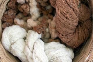 Coex, il cotone naturale che non brucia: ecco come funziona