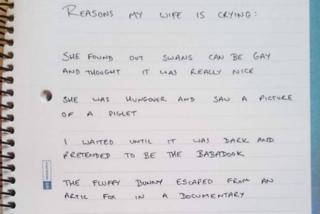 """""""Mia moglie piange per tutto"""": ecco la lista dei motivi più assurdi"""