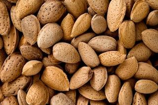 Olio di mandorle dolci: proprietà cosmetiche e alimentari