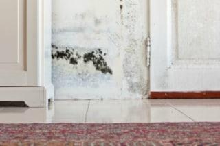Come eliminare l'umidità dai muri con soluzioni alternative