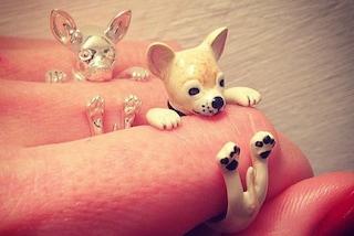 Dog Fever: i cani diventano gioielli da portare al dito