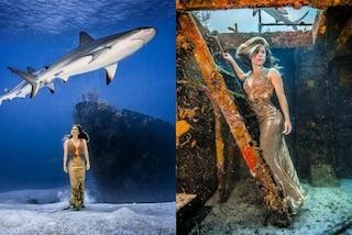 """La modella posa sott'acqua con gli squali senza barriere protettive: """"Sono innocui"""""""