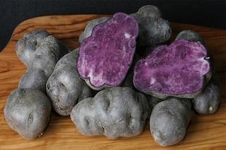 Patata viola: ricca di antiossidanti, aiuta a prevenire il cancro