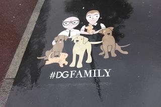 #DGFAMILY, i cani e i gatti fanno parte della nostra famiglia