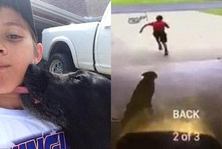 Filmato mentre abbraccia in segreto il cane dei vicini: al bimbo manca il suo cucciolo
