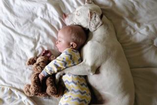 La tenera amicizia di Archie e Nora, il bimbo e il cucciolo che dormono abbracciati