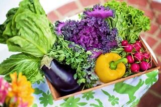 10 alimenti con poche calorie per bruciare i grassi e sgonfiare la pancia