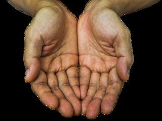 Linee delle mani allineate: ecco cosa rivelano sulla tua personalità