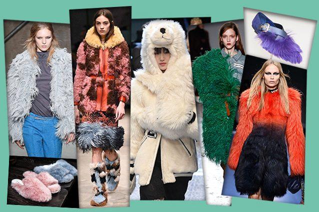 da sinistra Marni, Joshua Sanders, Prada, Dolce e Gabbana, Au Jour Le Jour, Car Shoe, Versace